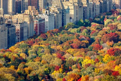 Bild Brillanten Farben fallen auf den Central Park Laub in den späten Nachmittag. Luftaufnahme in Richtung Central Park West. Upper West Side, Manhattan, New York City