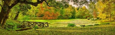 Bild Brückenszene im Herbst - Lipnik (Teketo) Park, Nikolovo Dorfgebiet, Bulgarien. Moderne Ölgemälde Illustration Kunst