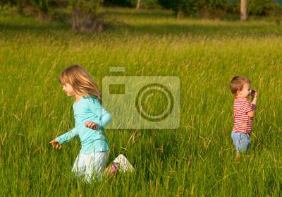 Bruder und Schwester spielen auf der Wiese am sonnigen Sommertag