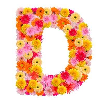 Bild Buchstabe D Alphabet mit Gerbera isoliert auf weißem Hintergrund