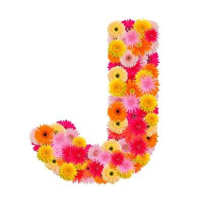 Bild Buchstabe J Alphabet mit Gerbera isoliert auf weißem Hintergrund