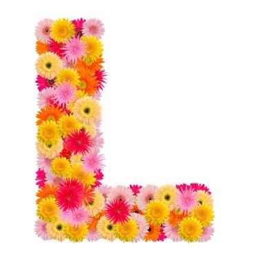 Bild Buchstabe L Alphabet mit Gerbera isoliert auf weißem Hintergrund