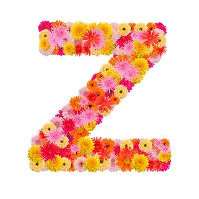 Bild Buchstabe Z Alphabet mit Gerbera isoliert auf weißem Hintergrund