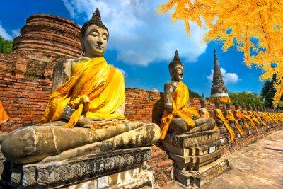Bild Buddha-Statuen in Ayutthaya, Thailand,