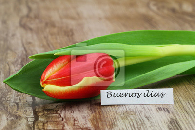 Buenos Dias Guten Morgen Auf Spanisch Mit Roter Und Gelber