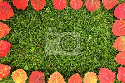 Bunte Blätter Rahmen auf Gras