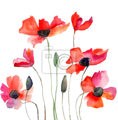 Bunte roten Blumen