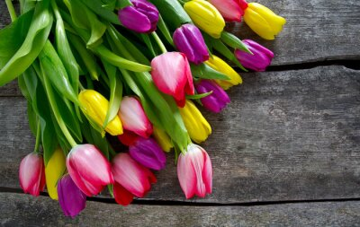 Bild Bunte Tulpen auf hölzernen Oberfläche