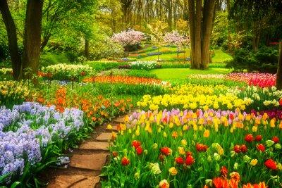 Bild Bunte Tulpen Flowerbeds und Stone Path in einem Frühling Formal Garden, retro getönten