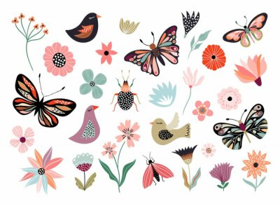 Bild Butterflies, flowers and birds hand drawn collection of different element, isolated on white