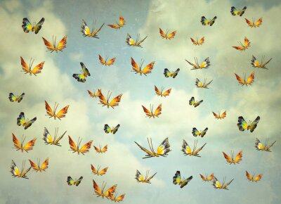 Bild Butterflies in the sky