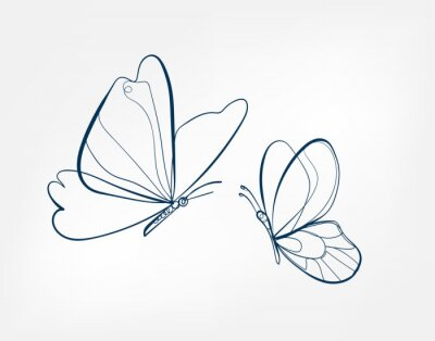 Bild butterfly insect vector art line isolated doodle illustration