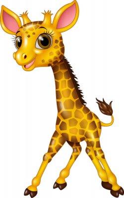 Cartoon Baby Giraffe Isoliert Auf Weißem Hintergrund Leinwandbilder