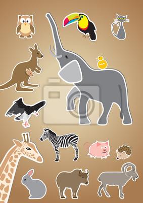 Cartoon-Stil Tiere: Eule, Tukan, Katze, Elefant, Känguru, vol