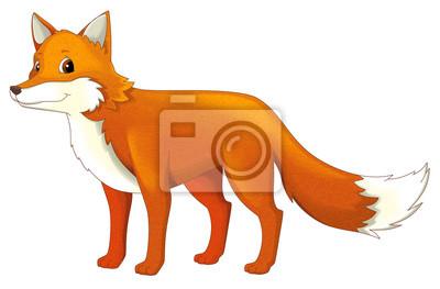 Cartoon Tier Fuchs Isoliert Illustration Für Kinder