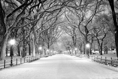 Bild Central Park, NY abgedeckt im Schnee in der Dämmerung