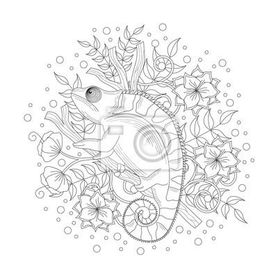 Bild Chamäleon Ausmalbilder Illustration