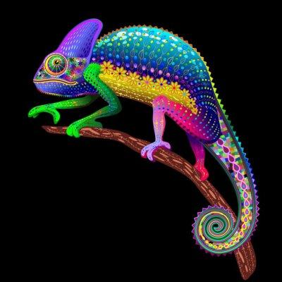 Bild Chameleon Fantasie Regenbogen-Farben