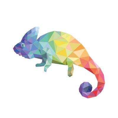 Bild Chameleon Farbe