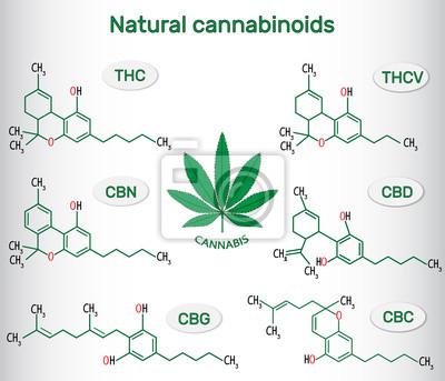 Bild Chemische Formeln Von Natürlichen Cannabinoiden In Cannabis
