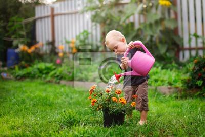 Bild Child boy watering flowers in garden from can