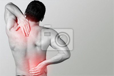 Bild Chiropractic.