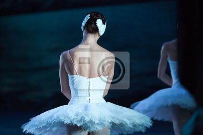 Choreographie, Tanz, Kulturkonzept. Rückseite der adorable kaukasischen Ballerina gekleidet in glänzenden Kleid mit Tutu für dansing legendären Ballett-Inszenierung Schwan See