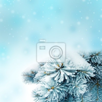 Bild christmas background