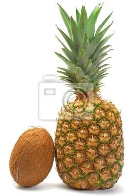 Bild Coco und Ananas auf dem weißen Hintergrund.