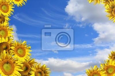 Collage - ein dekorativer Rahmen von Sonnenblumen