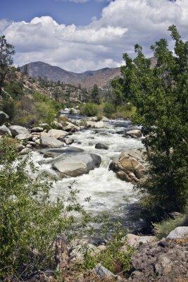 Colorado River in den USA. Vertikale Schuss