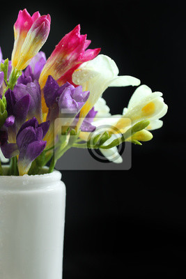 Colorful Crocus In A Vase Spring Flowers On A Black Background