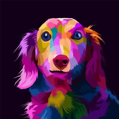 Bild colorful dog pop art portrait vector