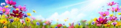 Bild Cosmos flower in the field