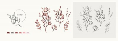 Bild Cotton plant logo and branch. Hand drawn wedding herb, plant and monogram with elegant leaves for invitation save the date card design. Botanical rustic trendy greenery
