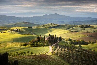 Bild Countryside near Pienza, Tuscany, Italy