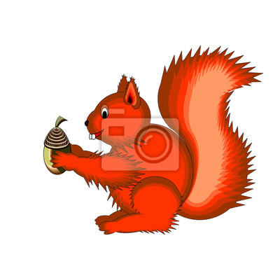 Cute Cartoon Eichhörnchen auf einem weißen Hintergrund