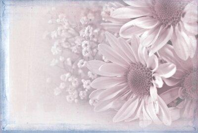 Bild Daisy Bouquet mit Textur Overlay Pastell rosa und blauen Rahmen