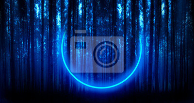 Bild Dark forest, blue fog, dark dark background, moon blue light in the forest. Neon circle in the forest
