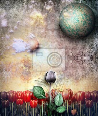 Darken Tulpe im alten Feld