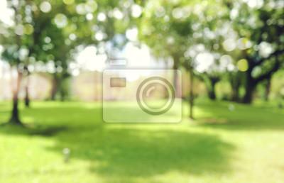 Bild Defokussiert Bokeh Hintergrund der Garten Bäume in sonnigen Tag