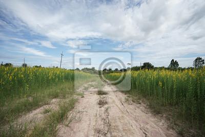 Bild Der Blumenweg