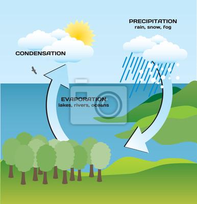 Die hydrologischen Kreis