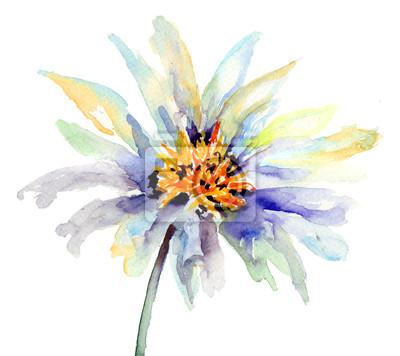 Die Knospe der Blume