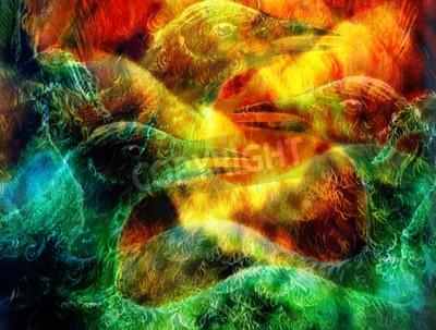 Bild Die phoenix Vogelcollage