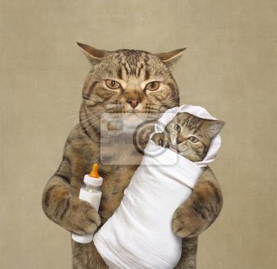 Bild Die Süße Katze Hält Sein Baby In Der Einen Pfote Und Eine Flasche