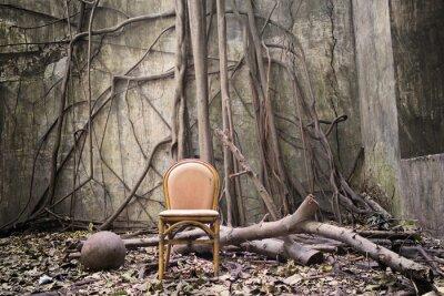 Bild Die Wurzeln, die alten Stuhl und die zerstörte Mauer