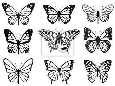 Bild Different butterflies set. Vector illustration