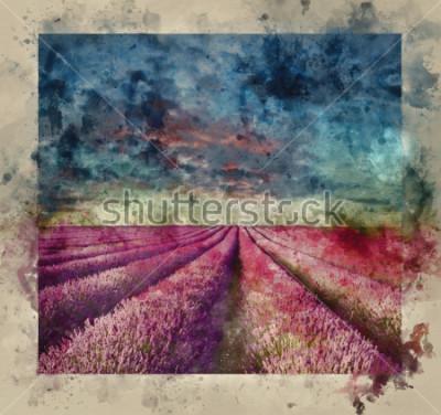 Bild Digital-Aquarellmalerei des erstaunlichen Sommersonnenuntergangs über Lavendelfeldlandschaft