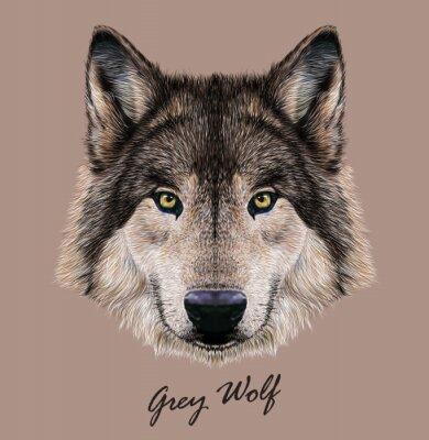 Bild Digitale Vektor-Illustration Porträt eines Wolfs.